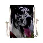 Great Dane harlequin  Drawstring Bag (Small) Front