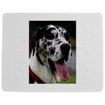 Great Dane harlequin  Jigsaw Puzzle Photo Stand (Rectangular) Front