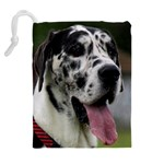 Great Dane harlequin  Drawstring Pouches (Extra Large) Back
