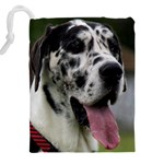 Great Dane harlequin  Drawstring Pouches (XXL) Back