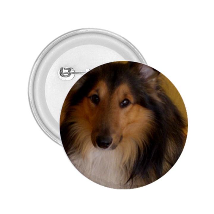 Shetland Sheepdog 2.25  Buttons