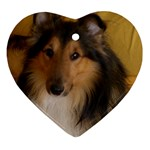 Shetland Sheepdog Ornament (Heart)  Front