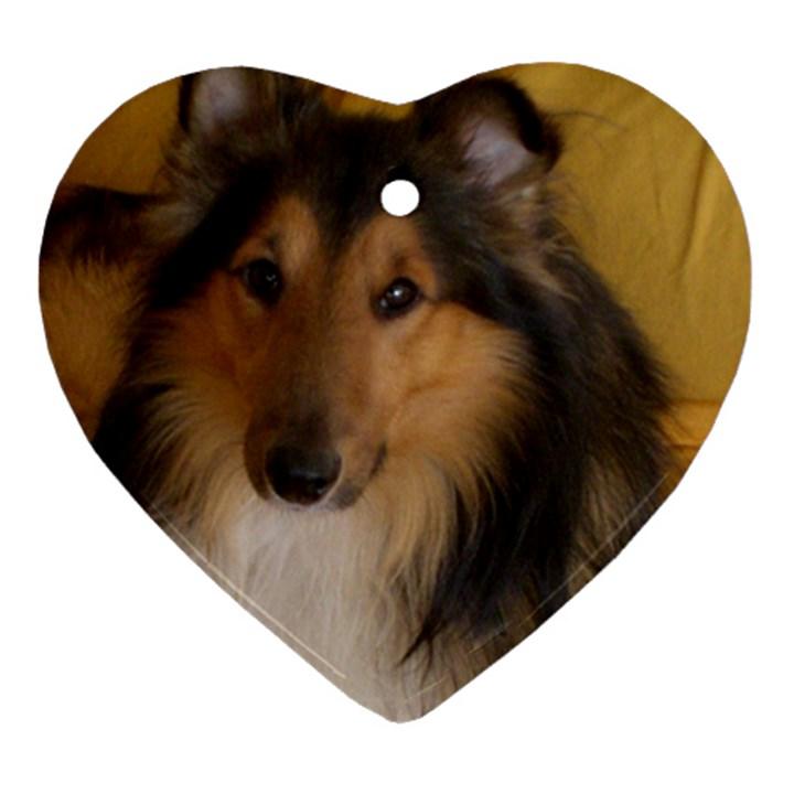 Shetland Sheepdog Ornament (Heart)
