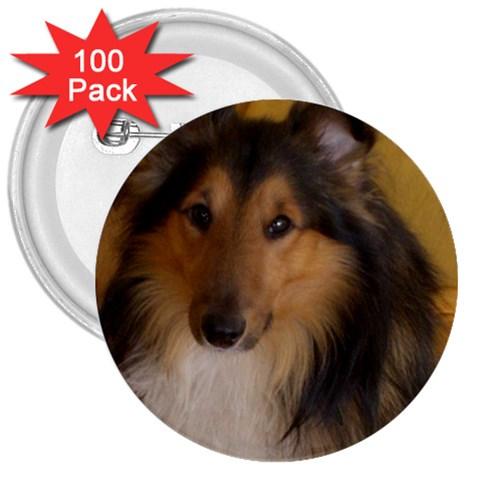 Shetland Sheepdog 3  Buttons (100 pack)