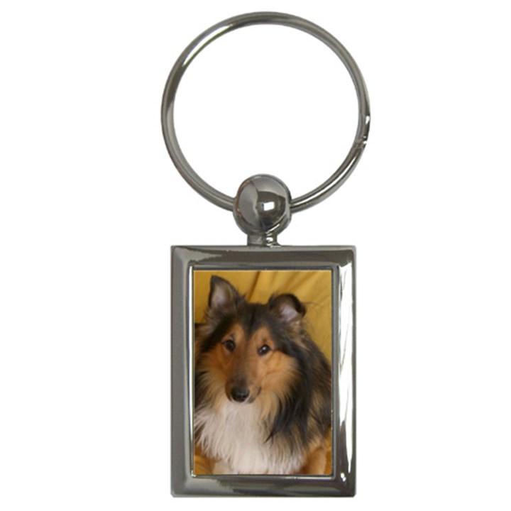 Shetland Sheepdog Key Chains (Rectangle)