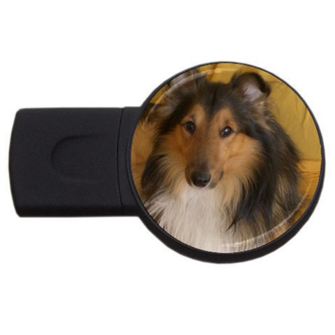 Shetland Sheepdog USB Flash Drive Round (2 GB)