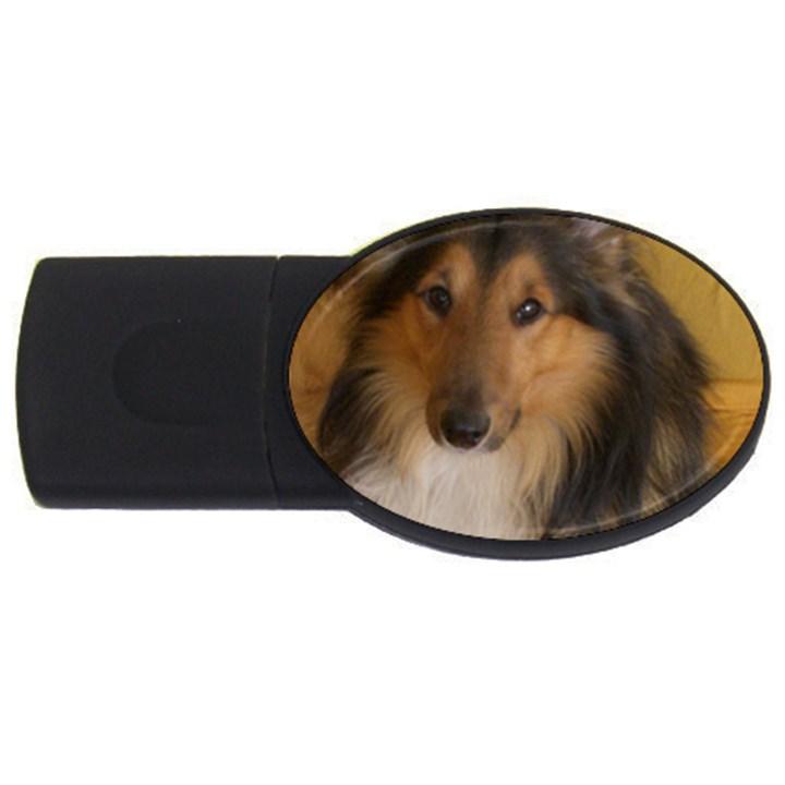 Shetland Sheepdog USB Flash Drive Oval (4 GB)