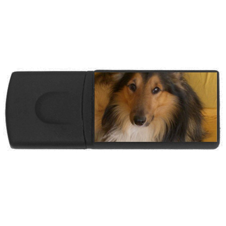 Shetland Sheepdog USB Flash Drive Rectangular (4 GB)
