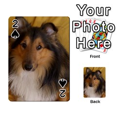 Shetland Sheepdog Playing Cards 54 Designs
