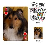 Shetland Sheepdog Playing Cards 54 Designs  Front - Heart8