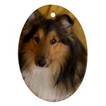 Shetland Sheepdog Oval Ornament (Two Sides) Front