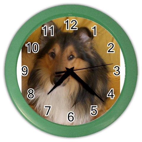 Shetland Sheepdog Color Wall Clocks