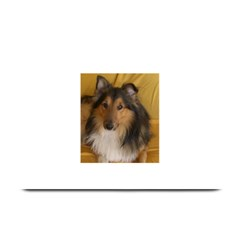 Shetland Sheepdog Plate Mats