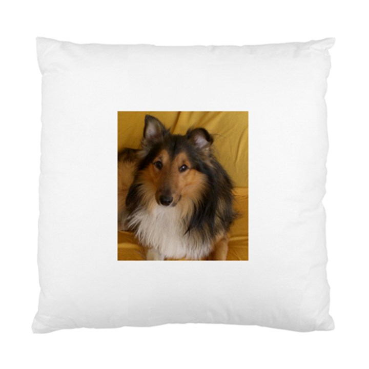 Shetland Sheepdog Standard Cushion Case (Two Sides)
