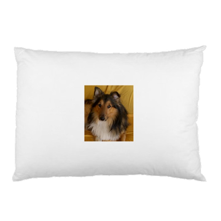 Shetland Sheepdog Pillow Case