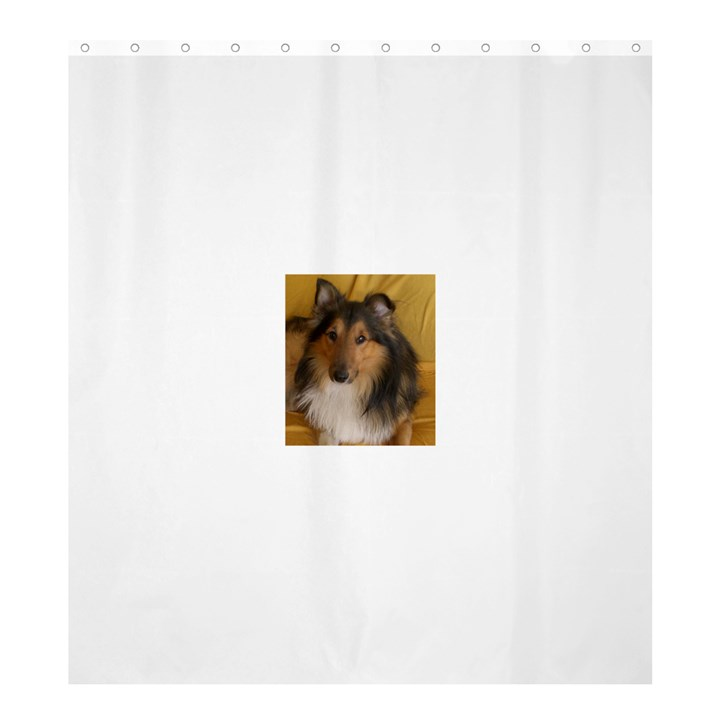 Shetland Sheepdog Shower Curtain 66  x 72  (Large)