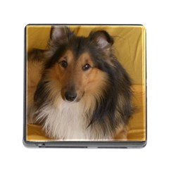 Shetland Sheepdog Memory Card Reader (Square)