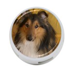 Shetland Sheepdog 4-Port USB Hub (One Side) Front