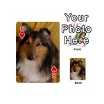 Shetland Sheepdog Playing Cards 54 (Mini)  Front - Heart6
