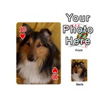 Shetland Sheepdog Playing Cards 54 (Mini)  Front - Heart10