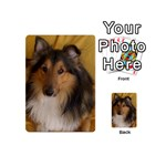 Shetland Sheepdog Playing Cards 54 (Mini)  Back