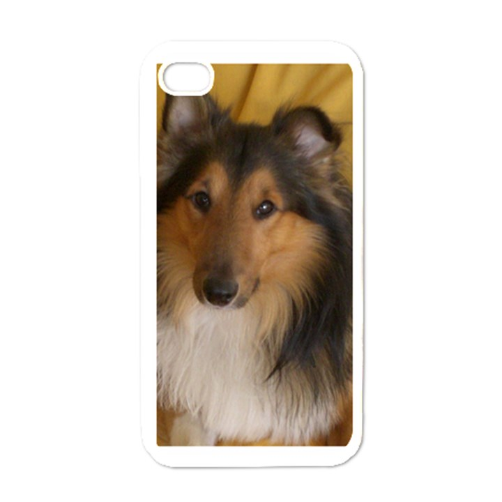 Shetland Sheepdog Apple iPhone 4 Case (White)