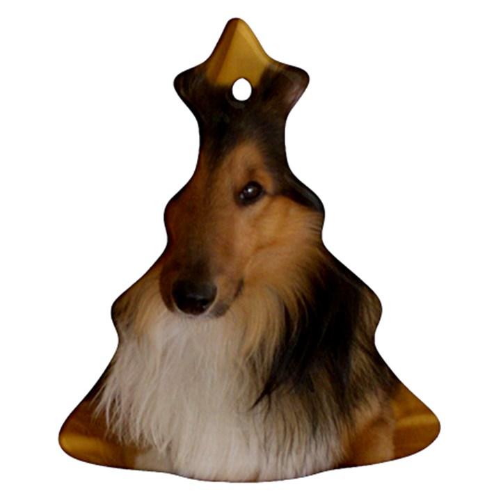 Shetland Sheepdog Ornament (Christmas Tree)