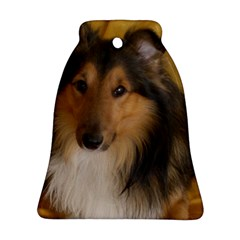 Shetland Sheepdog Ornament (Bell)