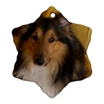 Shetland Sheepdog Snowflake Ornament (2-Side) Back