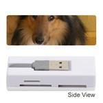 Shetland Sheepdog Memory Card Reader (Stick)  Front