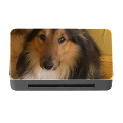 Shetland Sheepdog Memory Card Reader with CF