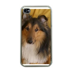 Shetland Sheepdog Apple iPhone 4 Case (Clear)