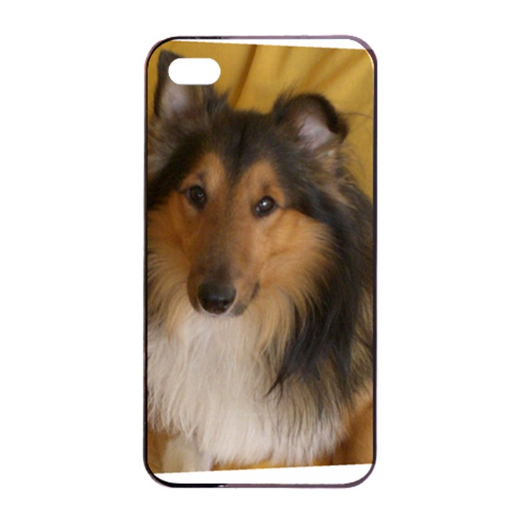 Shetland Sheepdog Apple iPhone 4/4s Seamless Case (Black)