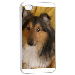 Shetland Sheepdog Apple Iphone 4/4s Seamless Case (white)