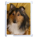 Shetland Sheepdog Apple iPad 2 Case (White) Front
