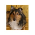 Shetland Sheepdog Happy New Year 3D Greeting Card (8x4) Inside