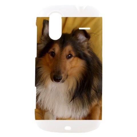 Shetland Sheepdog HTC Amaze 4G Hardshell Case