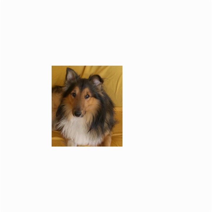 Shetland Sheepdog Small Garden Flag (Two Sides)