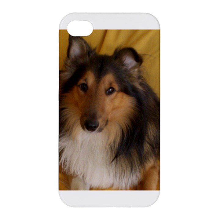 Shetland Sheepdog Apple iPhone 4/4S Premium Hardshell Case