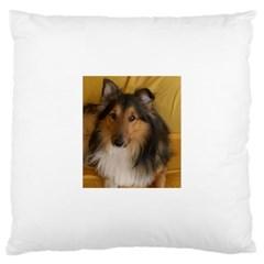 Shetland Sheepdog Large Cushion Case (two Sides)