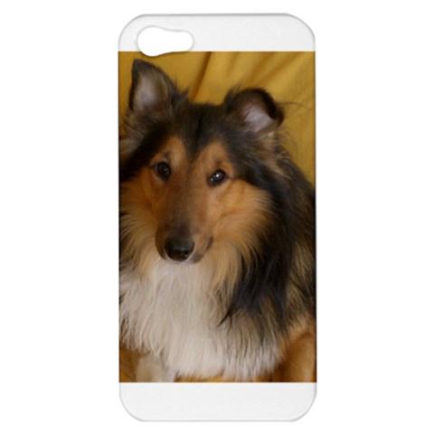 Shetland Sheepdog Apple iPhone 5 Hardshell Case