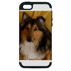Shetland Sheepdog Apple iPhone 5 Hardshell Case (PC+Silicone)