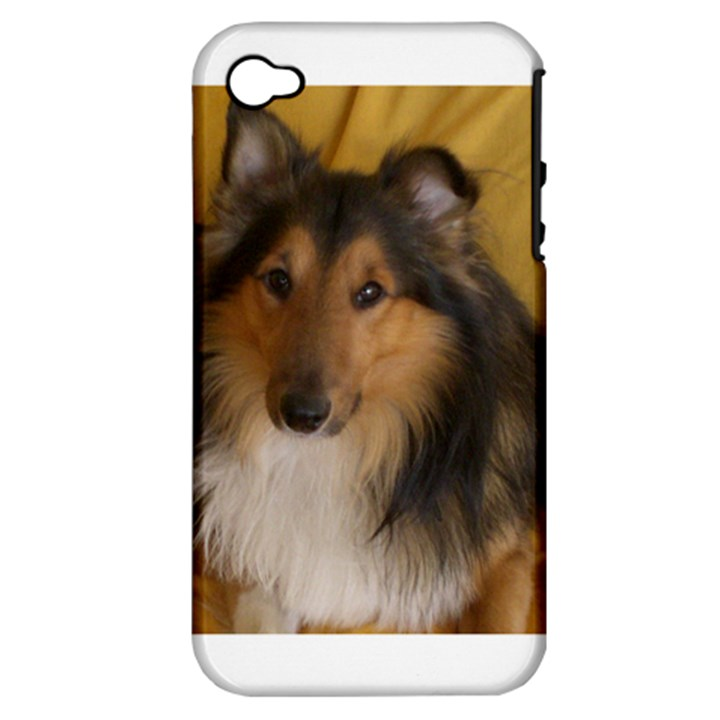 Shetland Sheepdog Apple iPhone 4/4S Hardshell Case (PC+Silicone)