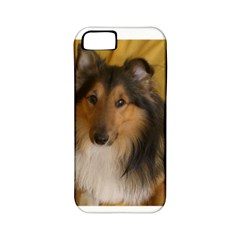 Shetland Sheepdog Apple iPhone 5 Classic Hardshell Case (PC+Silicone)