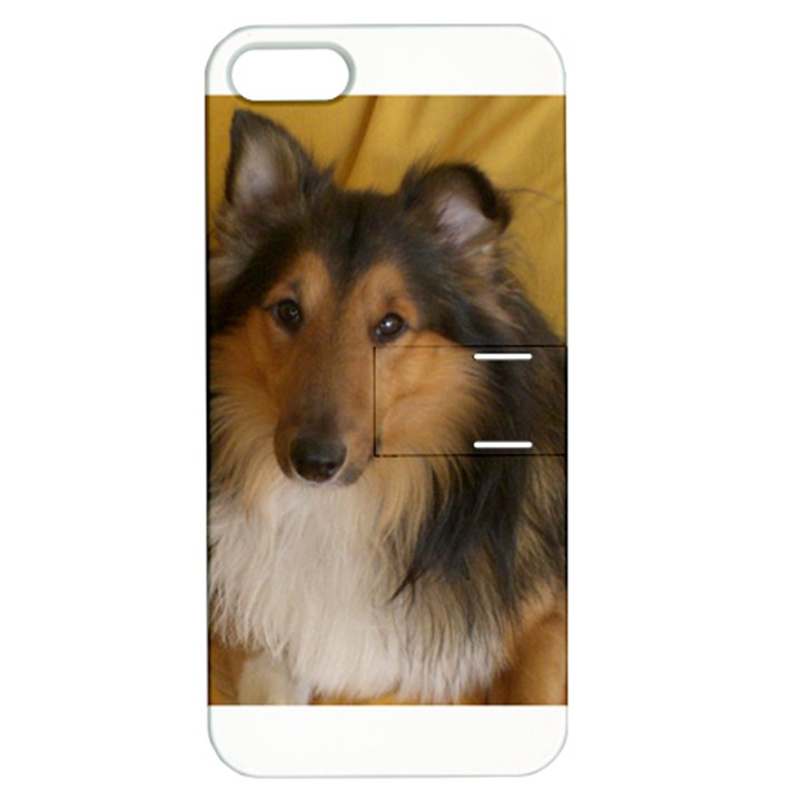 Shetland Sheepdog Apple iPhone 5 Hardshell Case with Stand