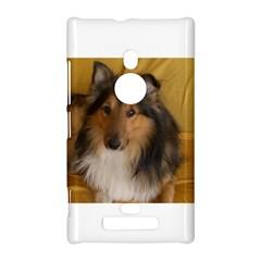 Shetland Sheepdog Nokia Lumia 925
