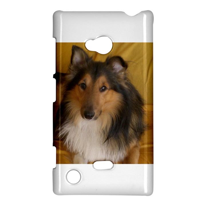 Shetland Sheepdog Nokia Lumia 720