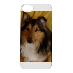 Shetland Sheepdog Apple iPhone 5S/ SE Hardshell Case