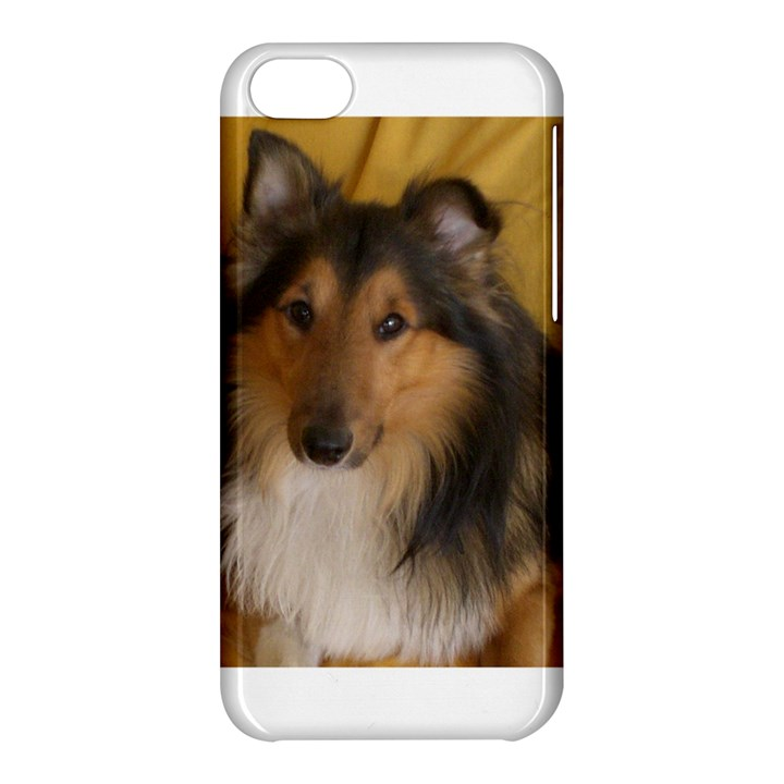 Shetland Sheepdog Apple iPhone 5C Hardshell Case