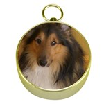 Shetland Sheepdog Gold Compasses Front